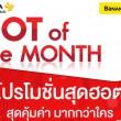 (กุมภาพันธ์) Hot Of The Month 2015