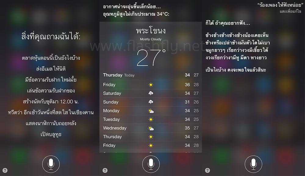 Siri-thai-flashfly