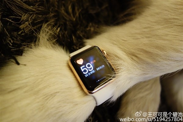 13015-7372-wang-si-cong-dog-apple-watch4-l