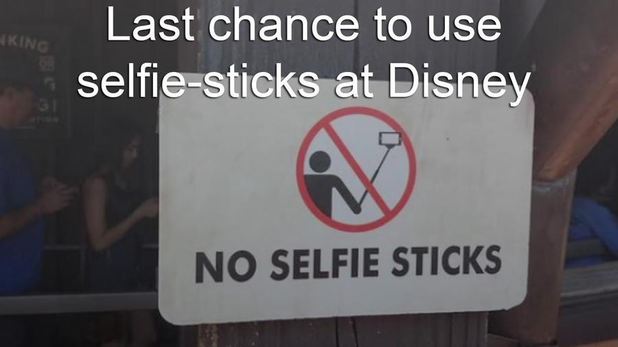 os-disney-world-selfie-stick-best-spots-pictur-009