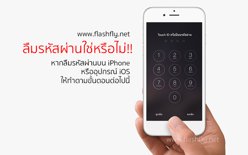 passcode-iphone-flashfly