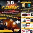 JIB-flashfly