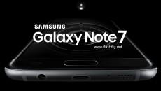 Note-7-flashfly