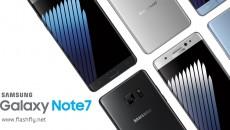 Note7-flashfly-022