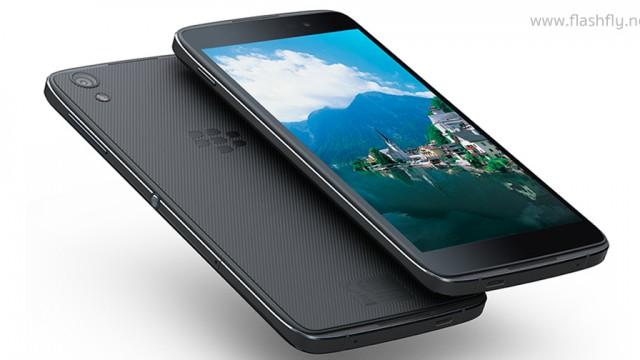 blackberry-TDEK50-flashfly