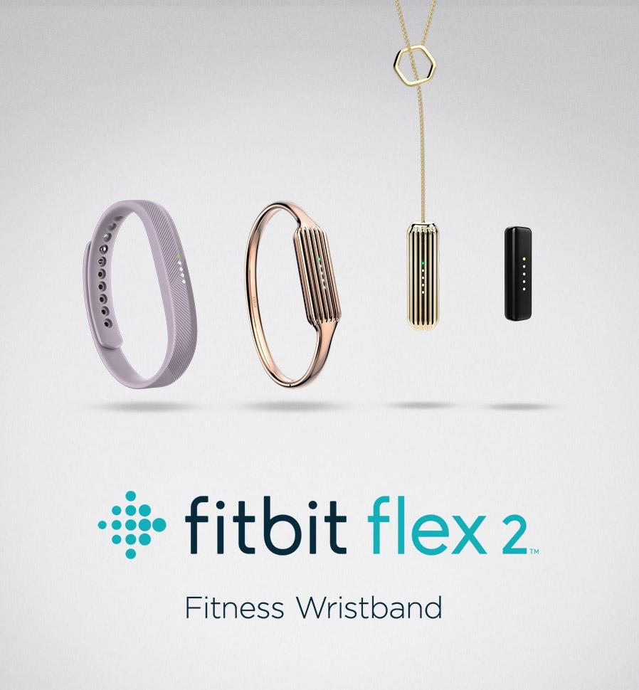 Fitbit-Flex-2_Lineup_Accessories copy