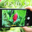 iOS-10.1-flashfly