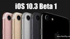 ios10.3-beta-1-flashfly