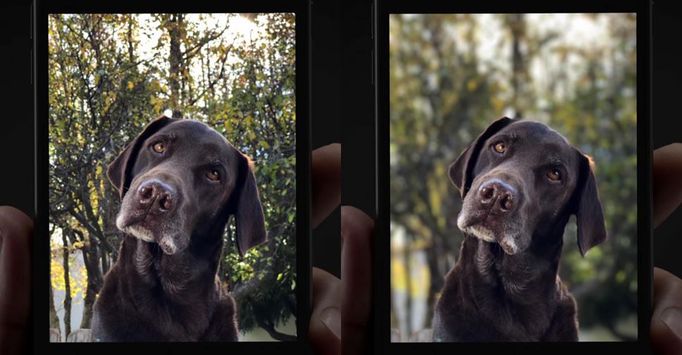 Portrait-Mode-iPhone-7-Plus