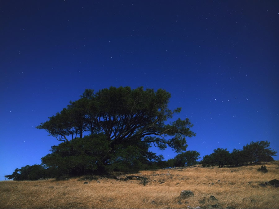 North-Star-Mount-Burdell