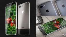 iPhone-edition-flashfly