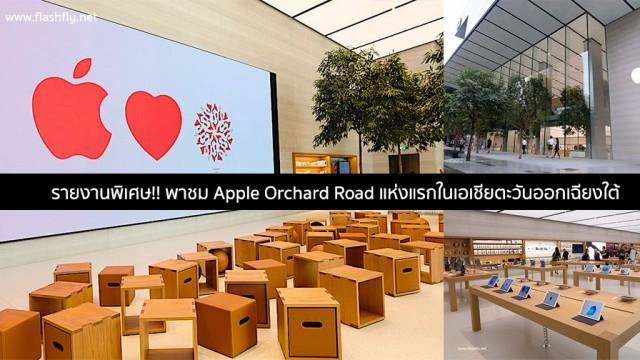 Apple-orchard-road-flashfly
