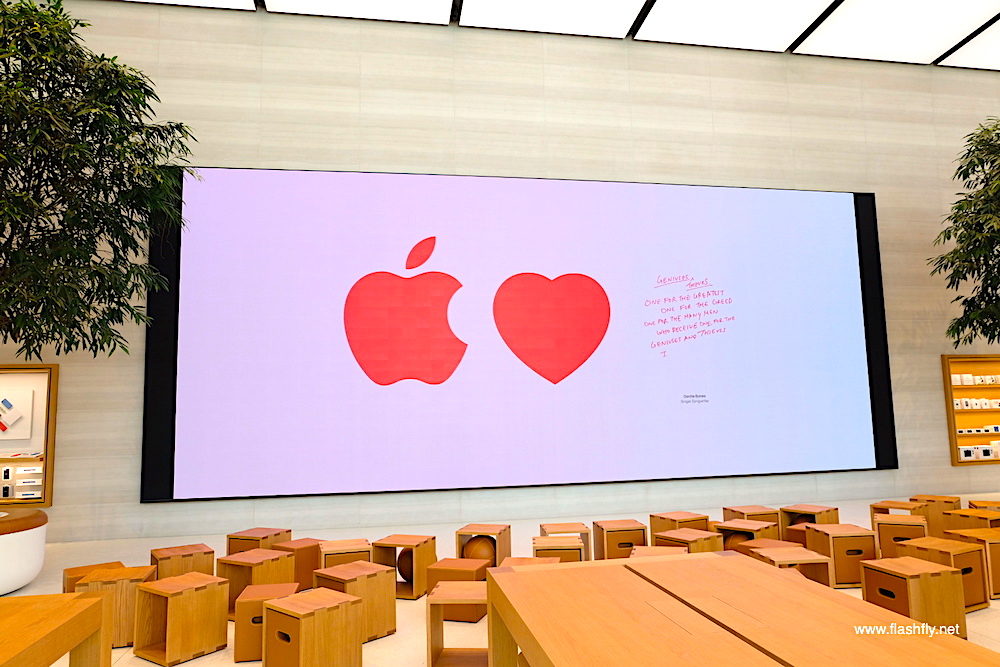 Apple-orchard-road-flashfly_1003