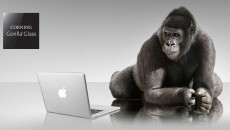apple-Gorilla