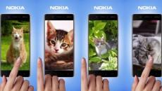 nokia-cat-day