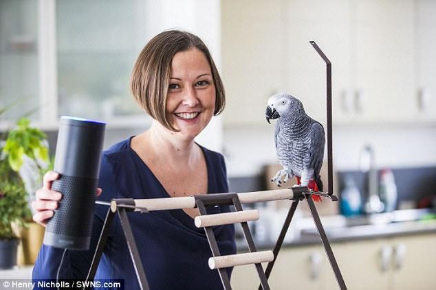 parrot-buddy-amazon