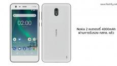 Nokia2-flashfly